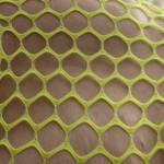 My hard nipples through the mesh