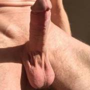 my dick in sun