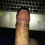 My dick online searching for pussy