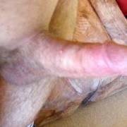 You like my tiny dick ?