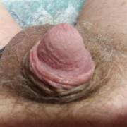 My tiny hairy dick.