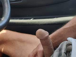 Horny driving in the car