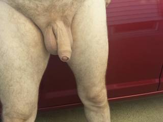 OMG!! Let him.  I'd enjoy having that hot sexy cock grow in my mouth....you think it will cum in it too?  You have a nice pair of balls to play with and suck on.  MILF K