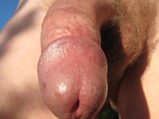 "WOW!...  I sure would love to blow that lovely looking cock...  I love a man's cock with a nice big ""EYE""!  I am sure your load would spurt out ""HEAVENLY"" over my small, but very firm 34B cups!  YUMM!