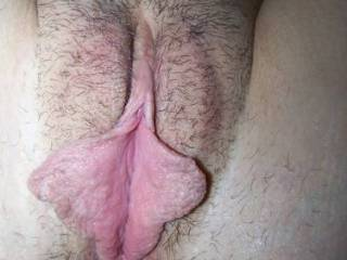 amazing pussy lips and ass spread apart for tasting