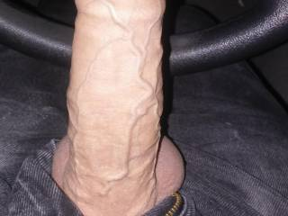 Pulled my uncut Cock out!! Who likes It??