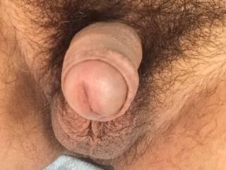 Do you like Uncut dick