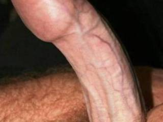 my lovely cock