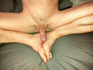 Cock and feet