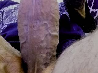 Picture of my cock