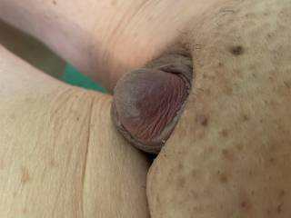 Got up this morning and saw how cute my cock looked so I took some pics.  It is peaking out from the covers.