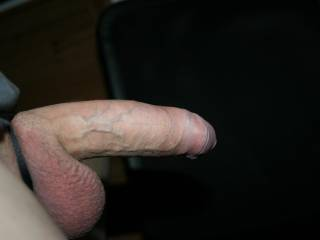 veins on my dick