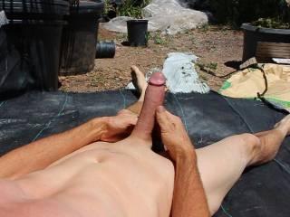 outdoor cock