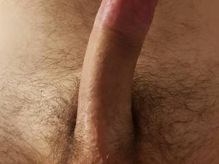 My hard cock is ready for you
