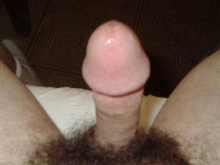 i love your hairy cock...  the head is so sweet...very suckable