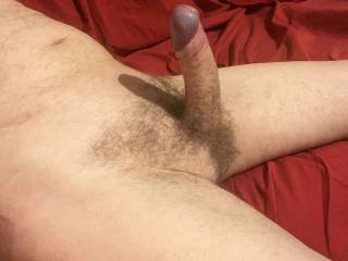 Now that you have \'Him\' solidly erect perhaps you would like to slide down onto him and let me give you a really energetic and orgasmic ride.