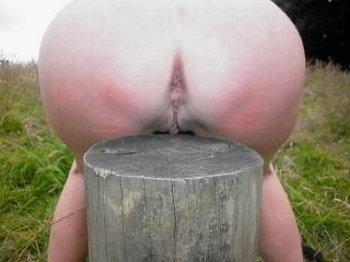 nail a big dildo to the stump next time and have her squeeze her pussy over it ;)