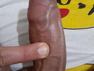 Hard cock showing veins and girth.