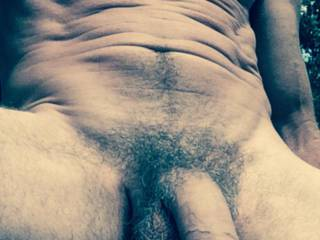 A  very hot cock, nice n hung n hairy.