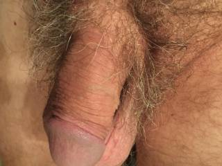 Wild and hairy or shaved?
