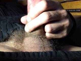 horny and stroking my thick cock before unloading the juice from my full hairy balls