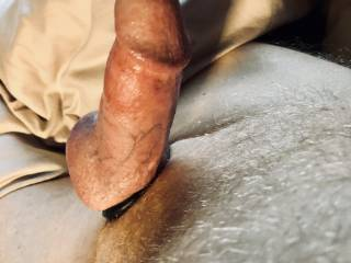 Hard penis with cock ring.
