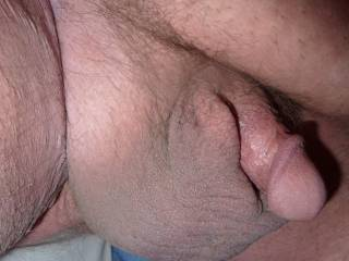 Close up high resolution view of my small dick.