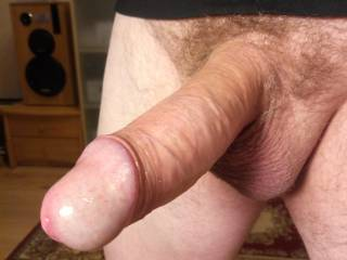 new! big fat cock