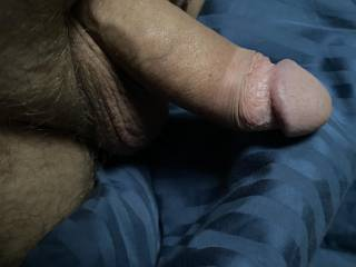 Getting hard in bed, feeling horny and wanna share!