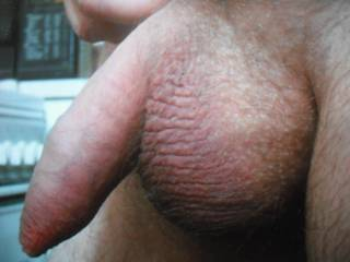 I took this one principally to show off my big balls to you but you might as well have a good look at my big prick too!!!
