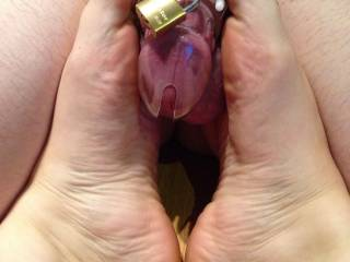 I like to keep my husband caged. I only let him out to play when I want to feel his cock in my pussy! Would love to have another cock to play with while he\'s caged up!