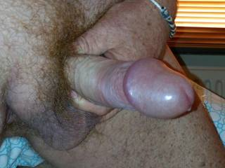 Oh yes,  i would love to lick that swollen head and taste yjour precum