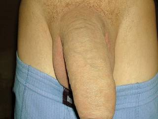 just my soft cock