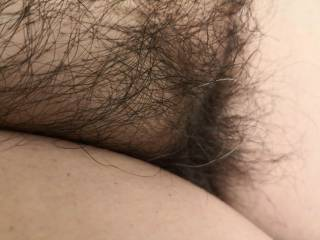 Vote if you want me to keep the pussy hairy or not