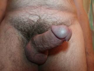 The first of two views of my fully erect cock pointing up