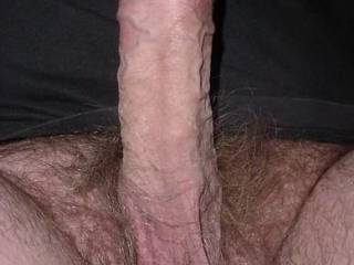Love it ! Beautiful cock ! Would love to feel those veins on my lips, would love to suck on those balls and take a nice load in my mouth from suck a beautiful cock!