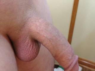 I do luv a shaved smooth cock and sack!!  DeeeLicious!!!