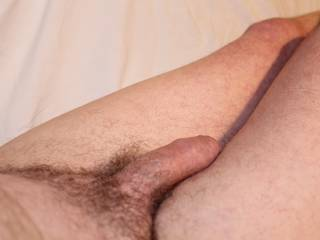 Nice soft cock, I would love to hold it in my hand, pull the foreskin back, and feel that inevitable erection coming on.  From Mrs. Floridaman