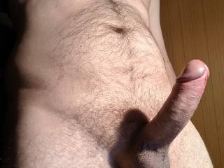 This is how hard my dick gets when I browse Zoig :)