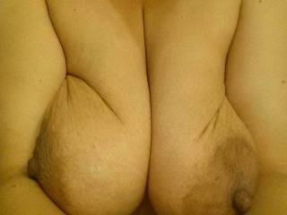 Very much so...and those huge nipples, like to see those tits hang free for use too