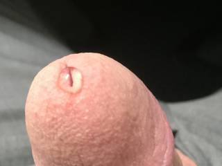 Some Zoig members getting me hard and dripping precum early in the day!  You know who you are!