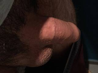 freshly shaved, can you make him hard?