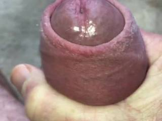 Panties and cock ring on. So hard I had to cum.