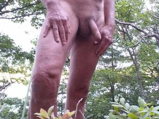 Naked in the woods  overlooking a lake. A great feeling. Do you like to be naked outside? Show me photos of your naked cock outdoors.