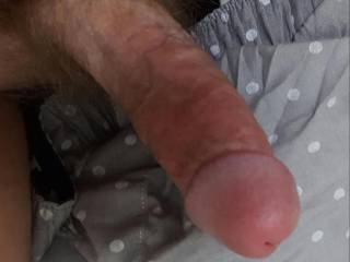 Took a picture of my dick. How would you rate it and would you ride it?