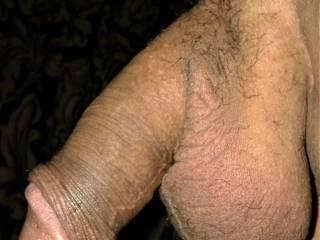 brown dick