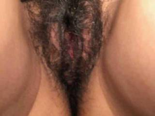 I love a hairy bush and my wife loves to send pics of her Bush and pa ties to me while I'm at work? What do u think of her bush?