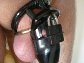 Locked up again, My wife made me take this pic while she was out and text it to her. Her boyfriend got a big kick from it.