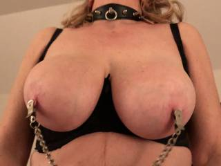 With the collar on and nipples clamped my bull is going deeper in my wet pussy. Can you help us in any way to get more excited?