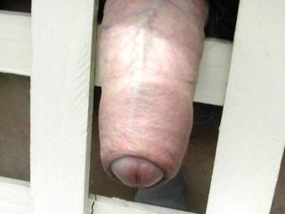 A really nice looking cock with a very nice foreskin!